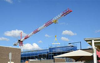 Name a crane